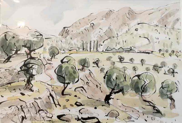 David Hayward Selected Works - Olive Grove Mallorca 2015