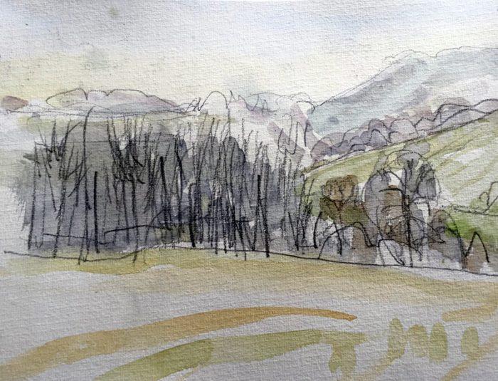 David Hayward Selected Works - Chilham Park 2020